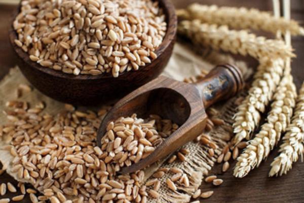 スペルト小麦って何?スペルト小麦の美味しいパンが買えるサイトやスペルト小麦のレシピまとめ